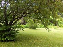 Terrain à vendre à Saint-Sauveur, Laurentides, Avenue  Carmen, 9782370 - Centris