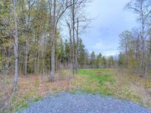 Terrain à vendre à Chelsea, Outaouais, 40, Chemin  Preston, 13649495 - Centris