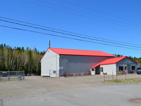 Industrial building for sale in La Pocatière, Bas-Saint-Laurent, 135, Rue du Parc-de-l'Innovation, 17748978 - Centris