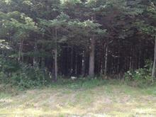 Lot for sale in Saint-Adrien-d'Irlande, Chaudière-Appalaches, 231, Route  Roy, 12952371 - Centris