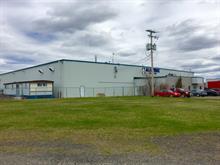 Bâtisse industrielle à vendre à Sainte-Agathe-de-Lotbinière, Chaudière-Appalaches, 115, Rue  Saint-Georges, 19343405 - Centris