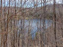 Lot for sale in Saint-Adolphe-d'Howard, Laurentides, Chemin de l'Héritage, 21378625 - Centris