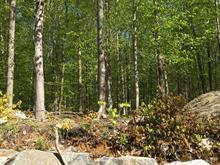 Lot for sale in Montebello, Outaouais, Chemin  Richelieu, 9799060 - Centris
