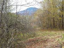 Lot for sale in Austin, Estrie, Chemin  North, 15500662 - Centris