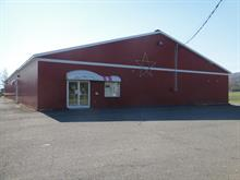 Bâtisse commerciale à vendre à Dégelis, Bas-Saint-Laurent, 520, Avenue  Adélard-Tardif, 16052941 - Centris