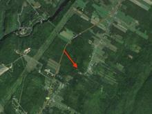 Terrain à vendre à Saint-Tite-des-Caps, Capitale-Nationale, Avenue de la Montagne, 17777827 - Centris