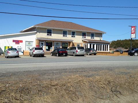 Bâtisse commerciale à vendre à Sainte-Madeleine-de-la-Rivière-Madeleine, Gaspésie/Îles-de-la-Madeleine, 117 - 119, Route  Principale, 27513757 - Centris
