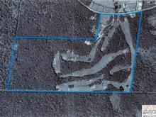 Bâtisse commerciale à vendre à Coaticook, Estrie, 1183, Chemin des Chalets, 20029774 - Centris