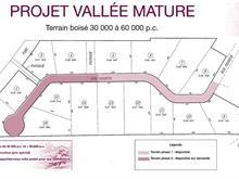 Terrain à vendre à Pointe-Fortune, Montérégie, Rue du Tisseur, 17375837 - Centris