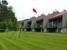 Maison de ville à vendre à Stoneham-et-Tewkesbury, Capitale-Nationale, 4, Chemin des Adirondacks, 21893362 - Centris
