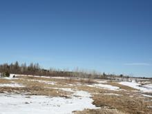 Hobby farm for sale in Rouyn-Noranda, Abitibi-Témiscamingue, 9483, Rang de la Faune, 23581172 - Centris