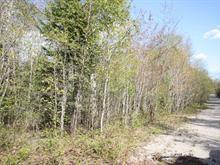 Terrain à vendre à Chertsey, Lanaudière, Rue  Salvador-Dali, 24419311 - Centris