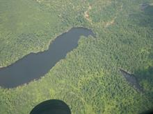 Terre à vendre à Wentworth-Nord, Laurentides, Chemin du Lac-Farmer, 13560883 - Centris