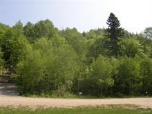 Terrain à vendre à Sainte-Agathe-des-Monts, Laurentides, Chemin du Mont-Catherine, 19011088 - Centris