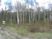 Lot for sale in Saint-Faustin/Lac-Carré, Laurentides, Chemin des Lacs, 9839414 - Centris