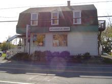 Bâtisse commerciale à vendre à Saint-Majorique-de-Grantham, Centre-du-Québec, 1958, boulevard  Saint-Joseph Ouest, 9167468 - Centris