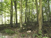 Terrain à vendre à Rigaud, Montérégie, Chemin  Saint-Georges, 20284548 - Centris