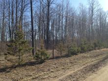 Lot for sale in Mansfield-et-Pontefract, Outaouais, Rue  Léonard, 25774508 - Centris