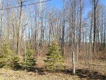 Lot for sale in Mansfield-et-Pontefract, Outaouais, Rue  Léonard, 14091817 - Centris