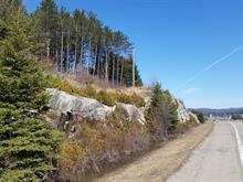 Terrain à vendre à Mont-Tremblant, Laurentides, Route  117, 12923734 - Centris