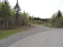 Terrain à vendre à Gaspé, Gaspésie/Îles-de-la-Madeleine, boulevard de Saint-Majorique, 12440696 - Centris