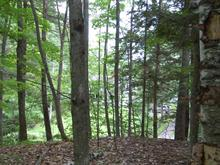 Lot for sale in North Hatley, Estrie, Rue  Wadleigh, 21016175 - Centris