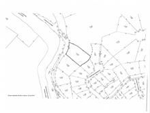 Lot for sale in Piedmont, Laurentides, Chemin de la Rivière, 12606129 - Centris