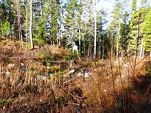 Lot for sale in Laniel, Abitibi-Témiscamingue, Chemin du Ski, 23852591 - Centris