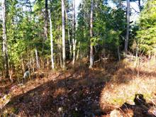 Lot for sale in Laniel, Abitibi-Témiscamingue, Chemin du Ski, 20477602 - Centris