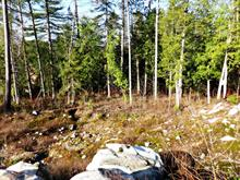 Lot for sale in Laniel, Abitibi-Témiscamingue, Chemin du Ski, 25145811 - Centris