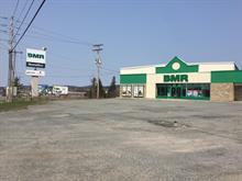 Bâtisse commerciale à vendre à Thetford Mines, Chaudière-Appalaches, 1649, boulevard  Frontenac Est, 13046221 - Centris