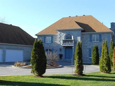 Maison à vendre à Pontiac, Outaouais, 249, Chemin  Cedarvale, 19862030 - Centris
