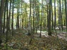 Lot for sale in L'Île-du-Grand-Calumet, Outaouais, 1, Chemin de la Montagne, 22223941 - Centris