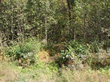 Lot for sale in Magog, Estrie, Rue  Lecours, 9463178 - Centris