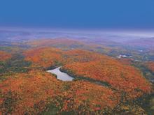 Terrain à vendre à Lac-Supérieur, Laurentides, Chemin du Lac-Quenouille, 10470585 - Centris