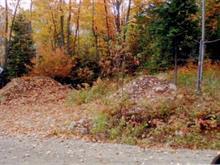 Lot for sale in Saint-Donat, Lanaudière, Chemin du Lac-Provost Nord, 8439544 - Centris