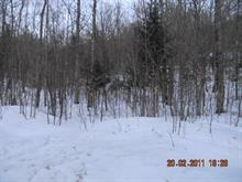 Lot for sale in Lac-Sainte-Marie, Outaouais, Rue  Beaudry, 8494161 - Centris