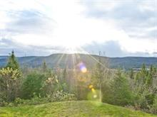 Lot for sale in Saint-Gabriel-de-Valcartier, Capitale-Nationale, 165A, 5e Avenue, 8533387 - Centris