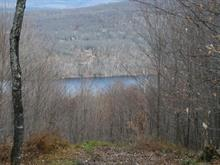 Lot for sale in Mont-Tremblant, Laurentides, Chemin  Jean-Paul-Riopelle, 8633040 - Centris