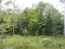 Terrain à vendre à Mont-Tremblant, Laurentides, Chemin du Lac-Mercier, 8632276 - Centris
