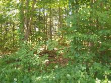 Lot for sale in Hinchinbrooke, Montérégie, Rue  Hemlock, 8589251 - Centris