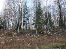 Lot for sale in Mont-Tremblant, Laurentides, Chemin du Lac-Mercier, 8634031 - Centris