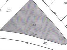 Terrain à vendre à Saint-Donat, Lanaudière, Chemin du Domaine-L.-S.-B., 8410502 - Centris