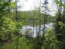 Terrain à vendre à Saint-Aimé-du-Lac-des-Îles, Laurentides, 981, Chemin de la Rive, 10387626 - Centris