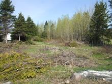 Lot for sale in L'Isle-aux-Coudres, Capitale-Nationale, Chemin des Coudriers, 10869518 - Centris