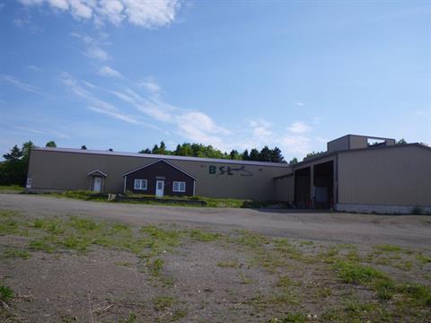 Bâtisse industrielle à vendre à Les Méchins, Bas-Saint-Laurent, 239, Route  Bellevue Ouest, 10907941 - Centris