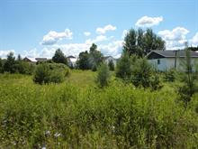 Lot for sale in Témiscouata-sur-le-Lac, Bas-Saint-Laurent, Rue  Commerciale Sud, 10724438 - Centris