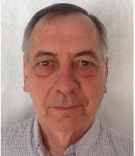 Michel Laganière, Courtier immobilier