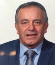 Lucio Iannuzzi, Courtier immobilier