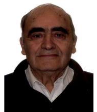 Panagiotis Pitsakis, Courtier immobilier